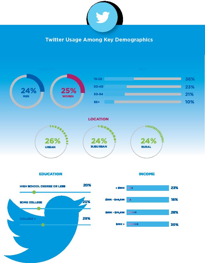 social media demographics twitter